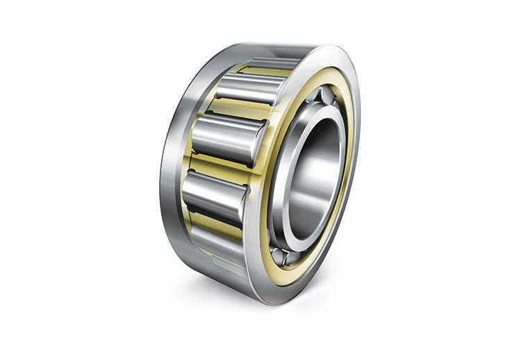 Radial cylindrical roller bearings